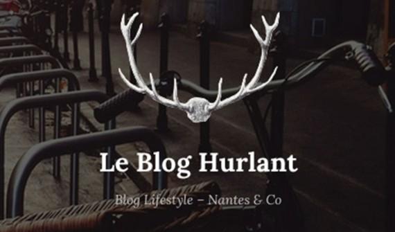 MAD sur le Blog Hurlant