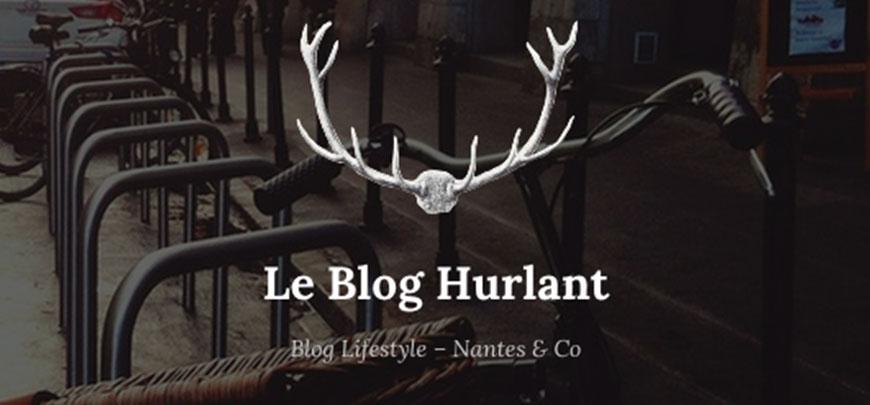 Capture du Blog Hurlant